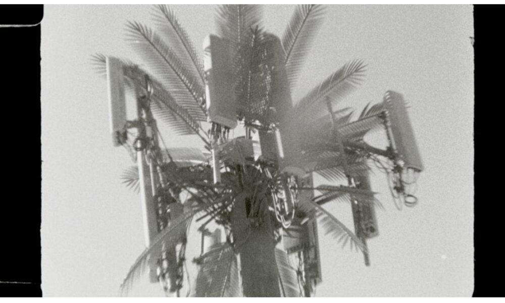 Anna Steinert blackwhite film Los Angeles